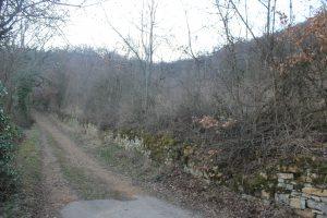 Le chemin du chêne avant le début des travaux